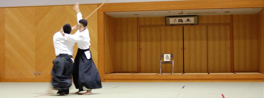 平塚・茅ヶ崎・辻堂の合氣道教室|心身統一合氣道会
